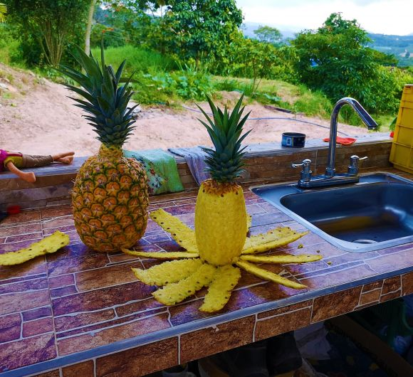 2-Day Tours - 2 Days: Pineapple Tour, Topocoro Lake and Cacao Tour